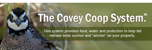 The Covey Camp System